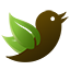 TreeWatch custom twitter bird